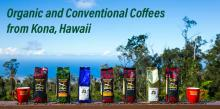 organic and conventional kona coffee