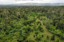 aerial view of farm toward mountain